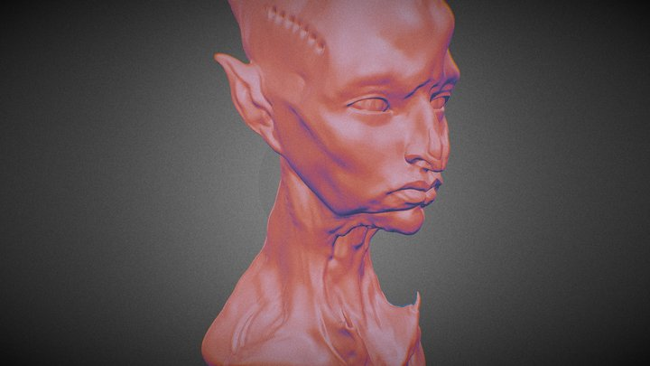 Doxy creature bust 3D Model