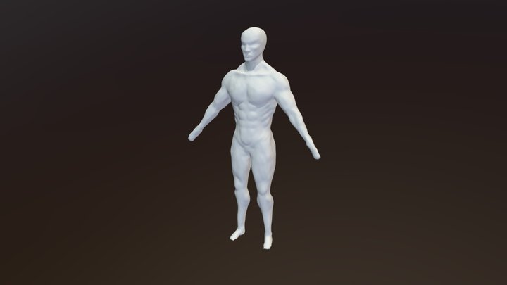My First Anatomy Study 3D Model