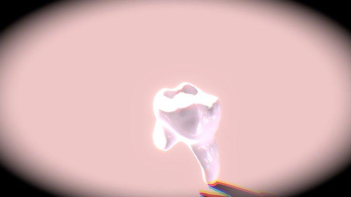 Tooth No Texture 3D Model