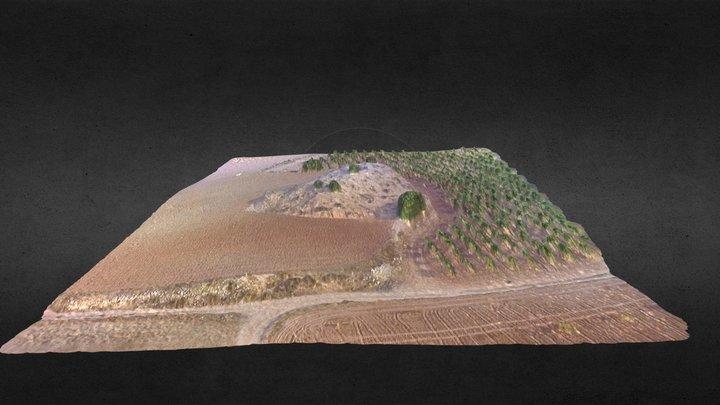 Motilla de Ledaña 3D Model