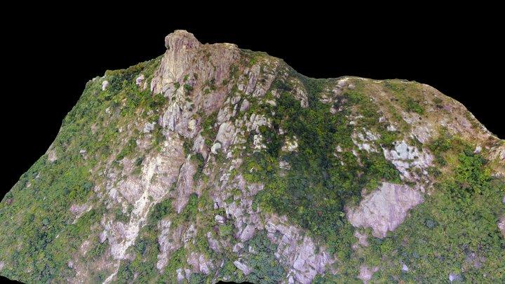 Lion Rock 3D Model