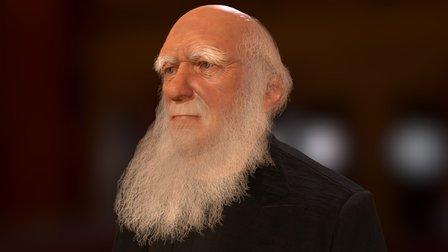 Darwin 3D Model