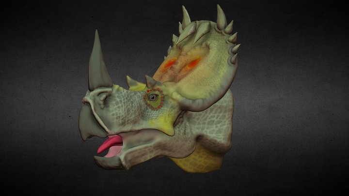 Centrosaurus apertus. 3D Model
