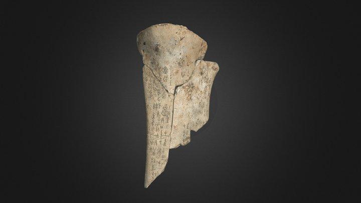 Oracle Bone, Or 7694/1655+1672 3D Model