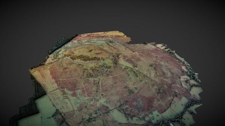 Brussestown Ring 3D Model