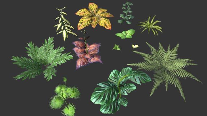 Set of plant tropic 3D Model