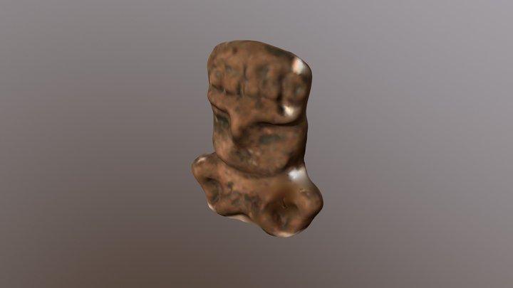 HALLAZGO 020 3D Model