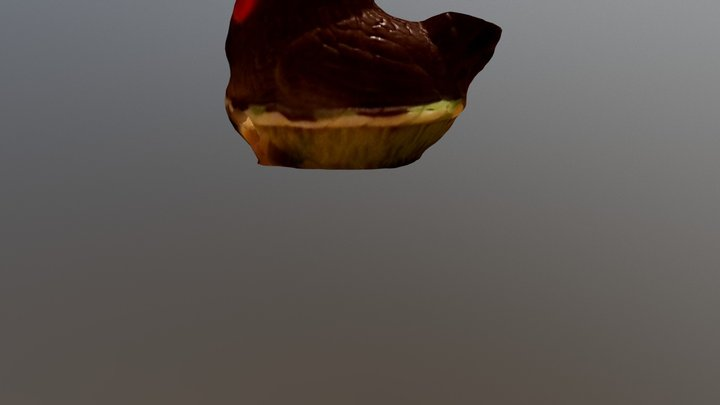 ChickenChocolate 3D Model