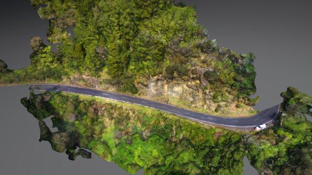 Rockfall, Bethells Road, West Auckland 3D Model