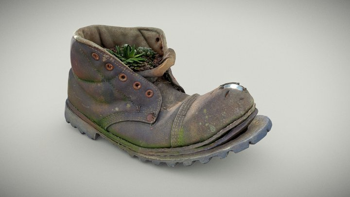 Old Boot With Cactus Plant 3D Model