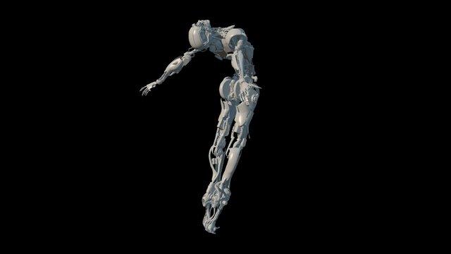 Evolve Proxy Model: Flesh long gone. 3D Model