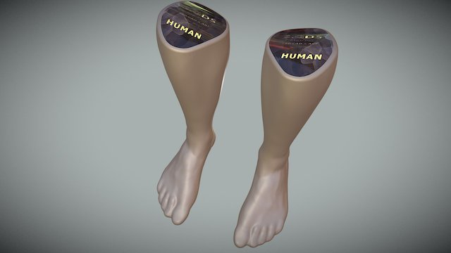 SCANNED FEET 3D Model