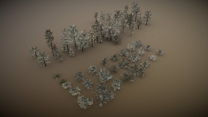 English Trees and Bushes pack 3D Model