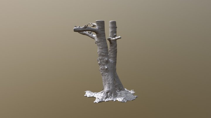 Arbre Mesh - Alias3D 3D Model