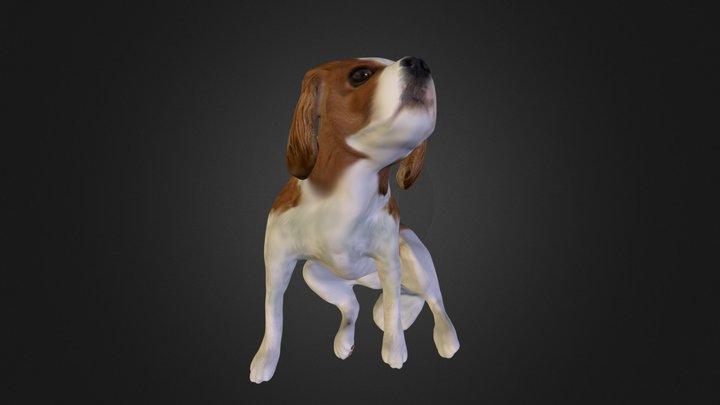 kuutyan 3D Model