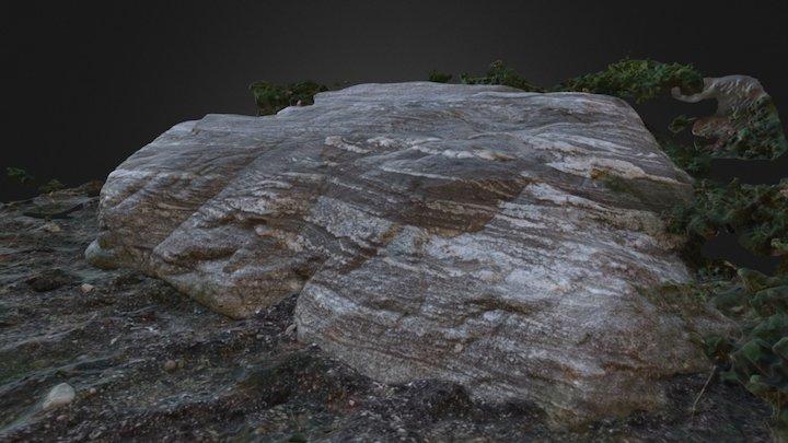 Gneiss Boulder 3D Model