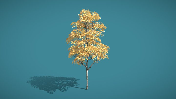 Platano Tree 3D Model