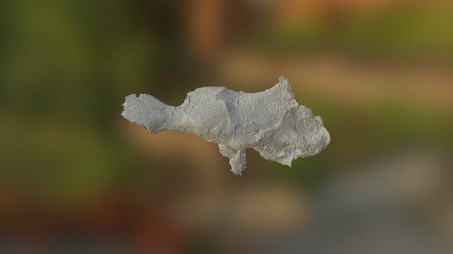 Alioramus 3D Model
