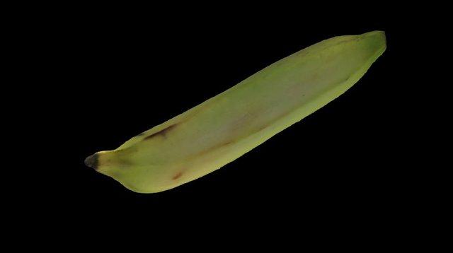 banana 3D Model
