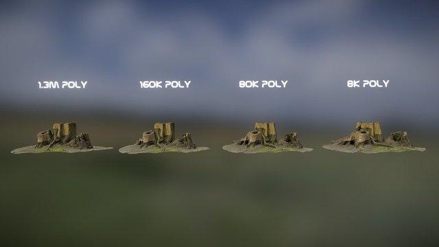 Stump_04 - Detail/Poly Comparison 3D Model