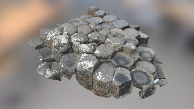 Columnar Jointing #3 3D Model