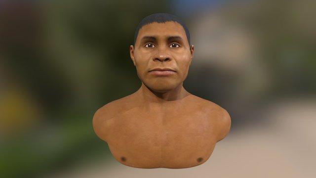 Gufan - Museu Paranaense 3D Model