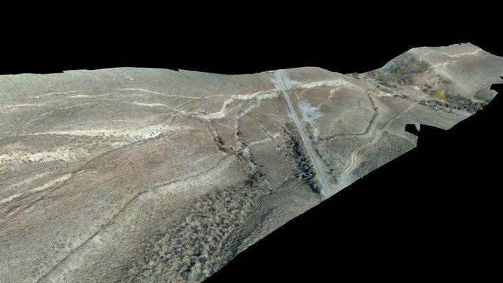 Borah Peak fault scarp (6.9 mag, 1983) 3D Model