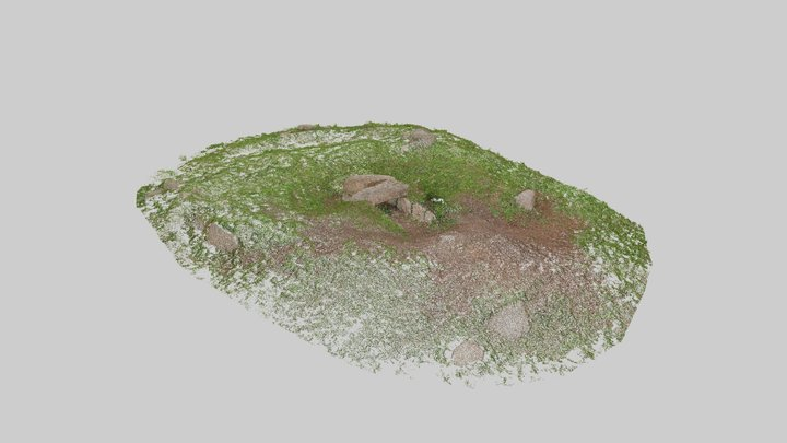 Tregeseal Entrance Grave - point cloud 3D Model