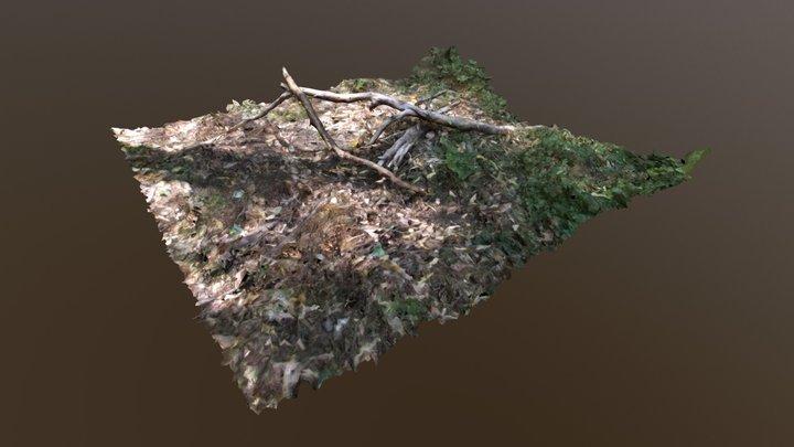 Garden clearing 3D Model