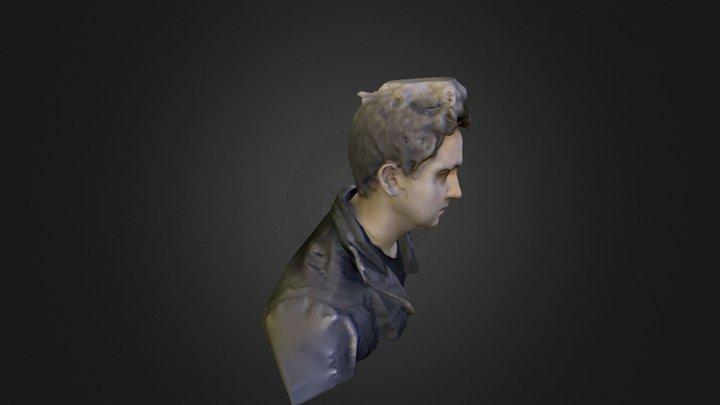 Cyril-3D 3D Model