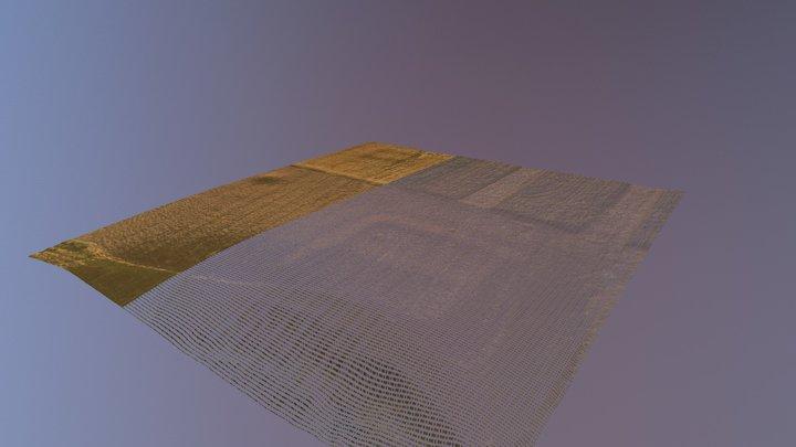 Baneasa 3D Model