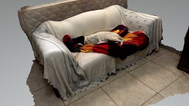 Cachorro no Sofá 3D Model