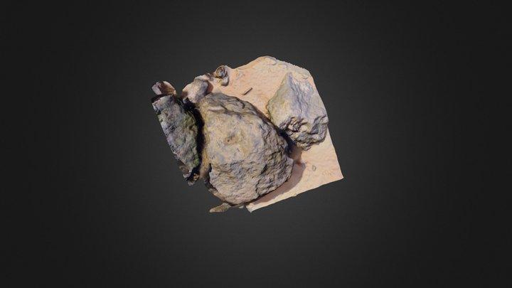 Rocher Tom 3D Model