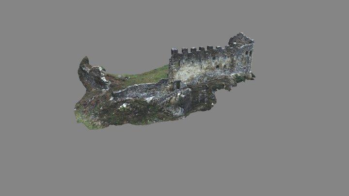 Burgruine Wartenstein untere Burg 3D Model