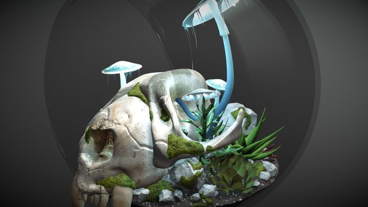 Mushroom Terrarium 3D Model