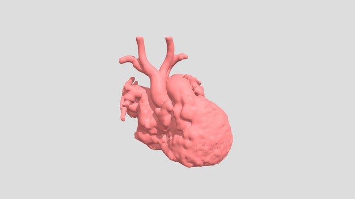 Heart02 3D Model
