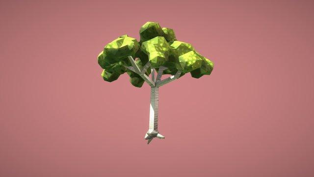 Laurel Tree - Low Poly 3D Model