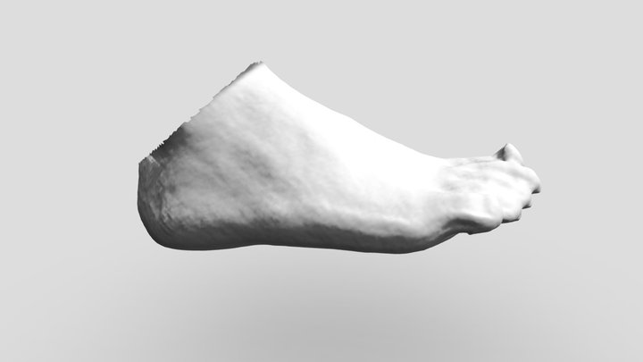 Foot Scan 3D Model