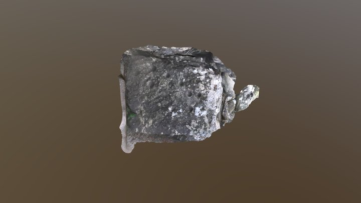 Cup markings at Clava Cairns 3D Model