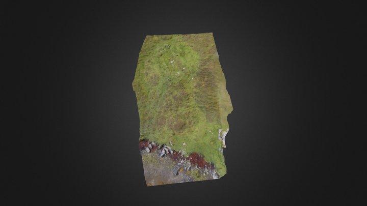 Shore feature Meall na Hoa, Grimsay, North Uist 3D Model