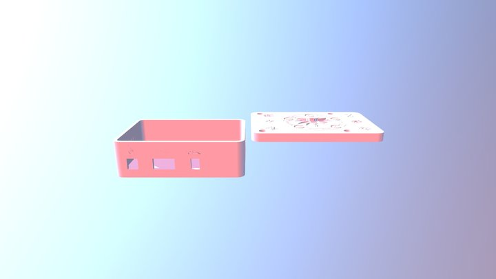 Raspberry Box Witcher Theme 3D Model