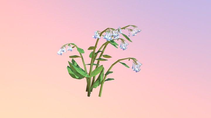 Virginia Bluebells Cluster (Mertensia virginica) 3D Model