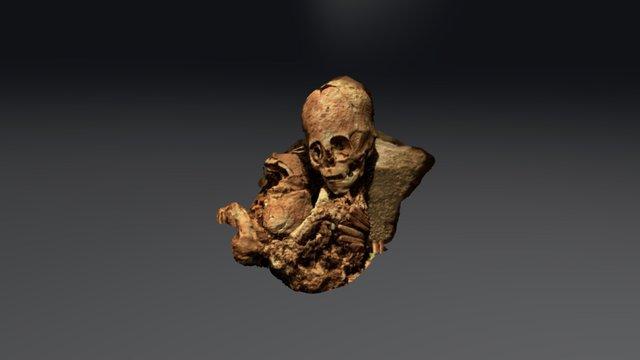 MOMIA, PERU 3D Model