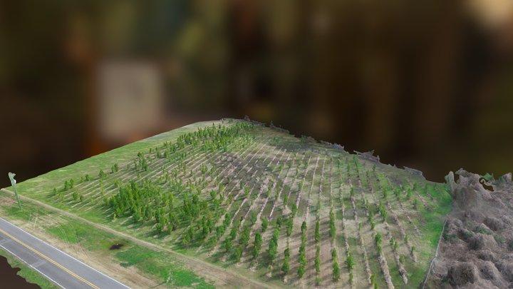 ERC - Douglas Byrd High School 3D Model