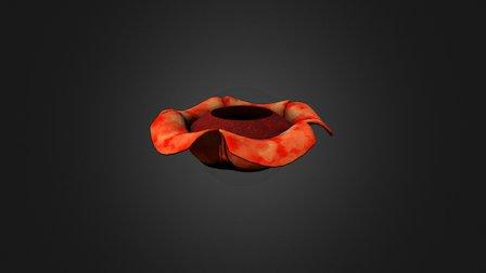 Refflesia Arnoldii Plant 3D Model