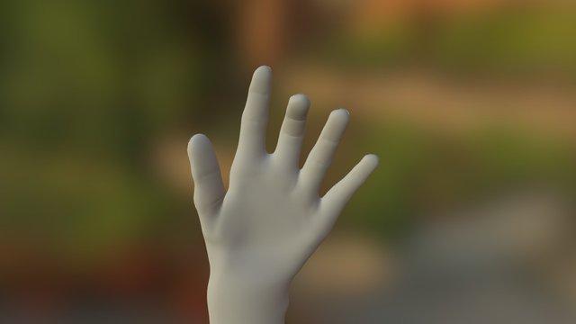 Karim main gauche 3D Model