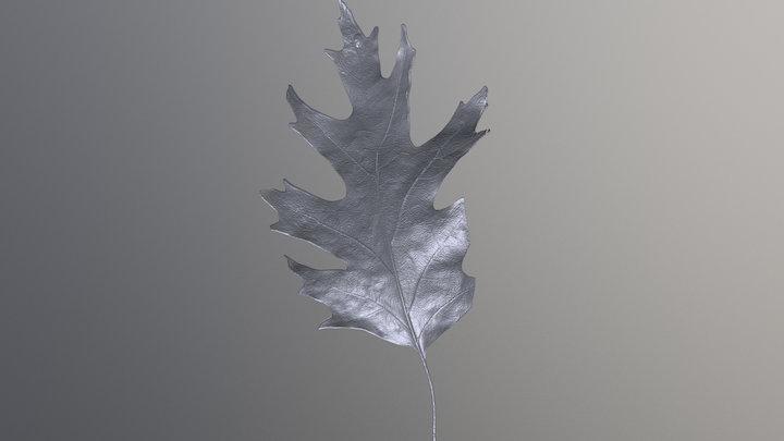 Sample Leaf 3D Model