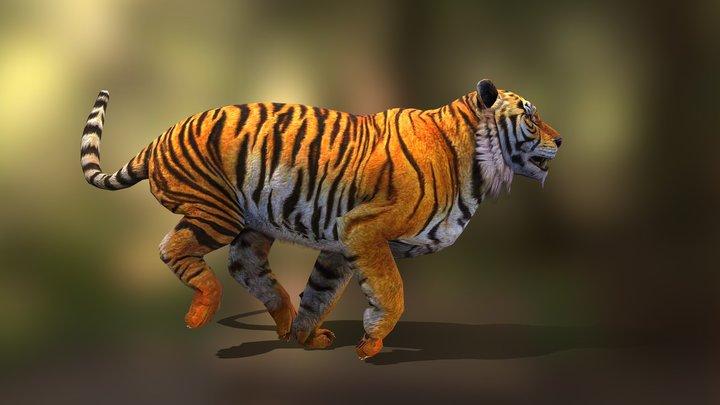tiger run v03 3D Model