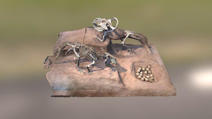 Protoceratops andrewsi - AMNH 3D Model