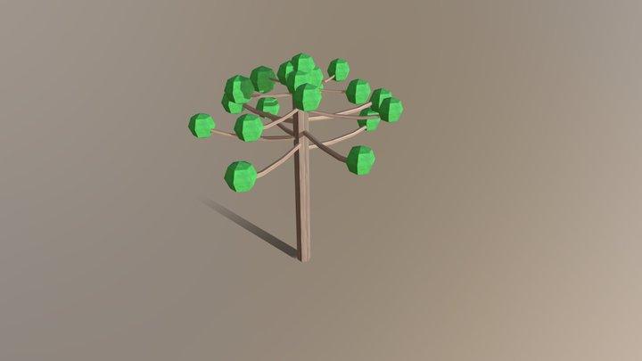 Araucaria 3D Model